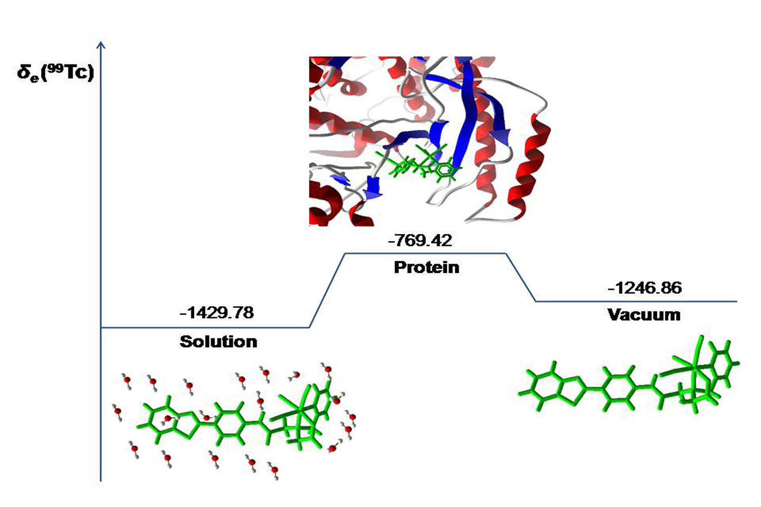 99Tc NMR as a Promising Technique for Structural Investigation of Biomolecules